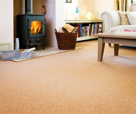 Living Room Carpet Cheap How To Choose The Right Living Room Carpet Roy Home Design