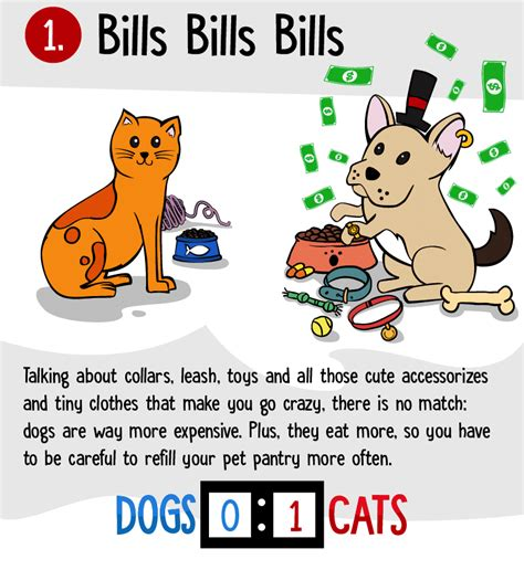 why dogs are better than cats 8 reasons why dogs are better than cats displayed by an awesome infographic