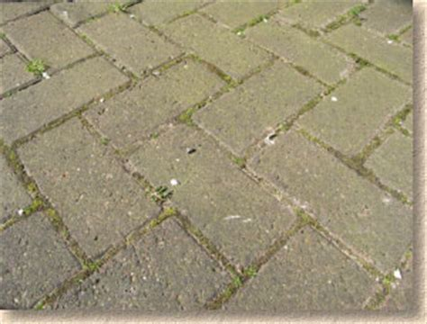 Cleaning Algae From Patio by Pavingexpert Paving Maintenance And Cleaning
