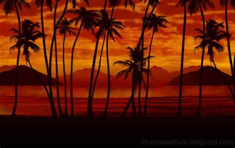 Sunset Wall Mural scarface wallpaper palm trees wallpapersafari