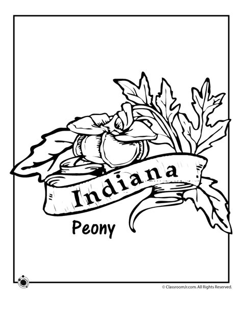 indiana state flower coloring page indiana state flower coloring page woo jr kids activities