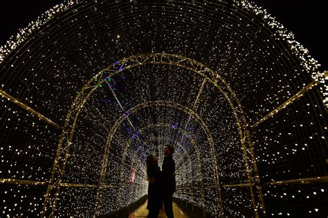 where to get lights where to propose in at
