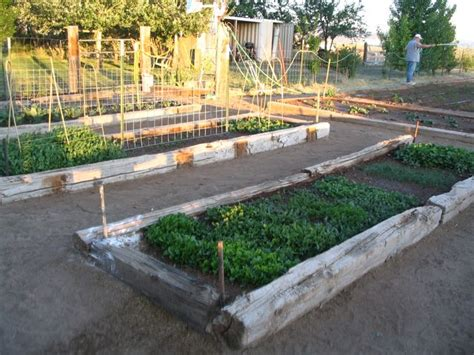 Railroad Ties For Garden by When Should I Plant Garden In Cedar City Utah