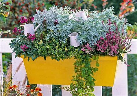 fiori per balconi soleggiati il piacere di piante e fiori per il balcone