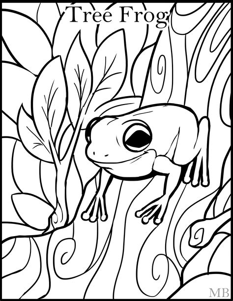 1000 Images About Coloring Activity Pages For Kids On Tree Frog Coloring Page