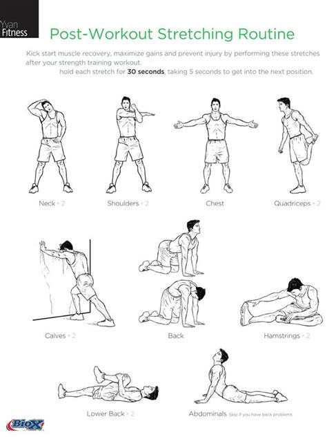 1000 ideas about post workout stretching exercises for first graders sciatica pain exercises for and on