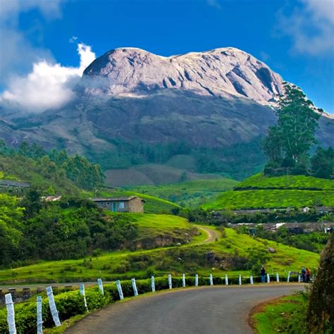 munnar thekkaddy alleppey kerala honeymoon package