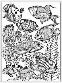 realistic coloring pages for adults free fish coloring pages realistic coloring pages