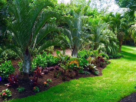 Tropical front amp backyard landscapes palms amp color tropical landscape orlando by