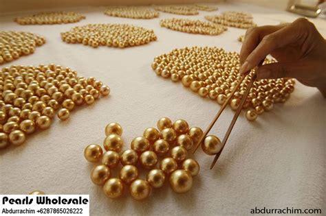 Kerang Mutiara Lombok jenis kerang penghasil mutiara harga mutiara lombok perhiasan toko emas terpercaya jual