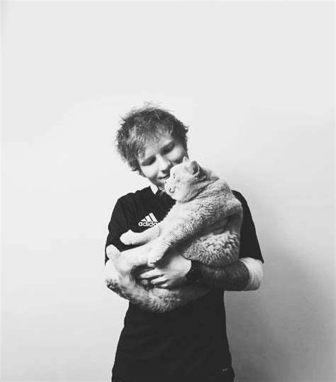 8 times ed sheeran was the boyfriend of our dreams in the who is your dating spirit animal happy music radio and