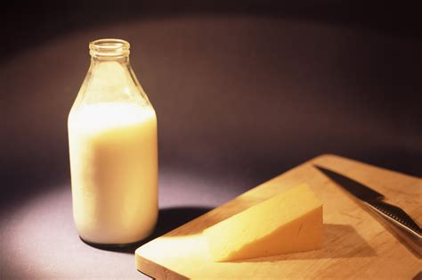 Cheese From Milk cheese and milk free stock image