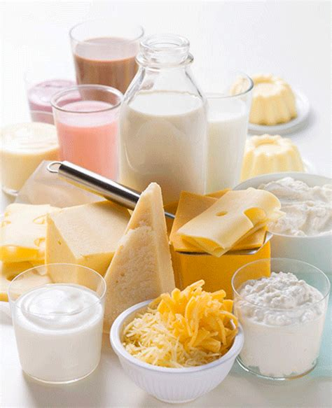 The Best Diet Milk And Cheese Department by Local Foods Shine During National Dairy Month Milk Means More