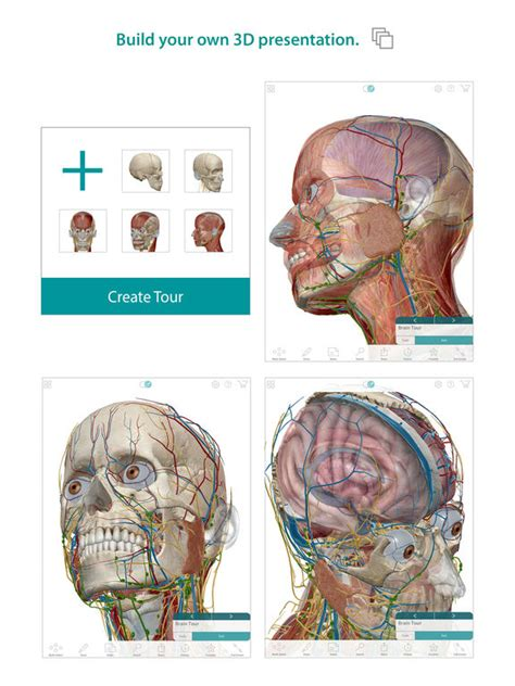 rhoton s atlas of neck and brain 2d and 3d images books human anatomy atlas 3d anatomical model of the human