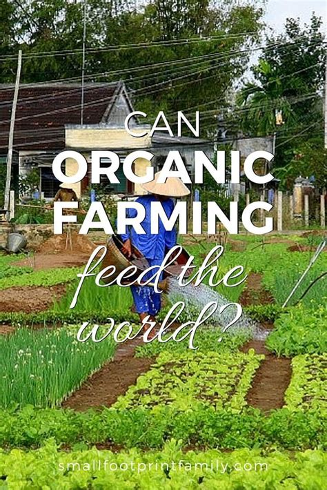 un report says small scale organic farming only way to feed the world grid world organic farming more and the world on
