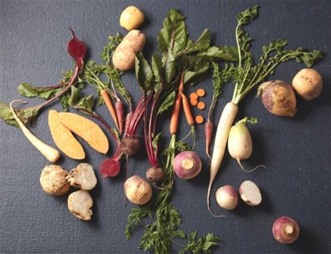 identifying root vegetables what are root vegetables