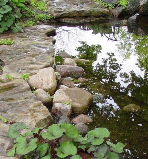 backyard bassin 67 cool backyard pond design ideas digsdigs