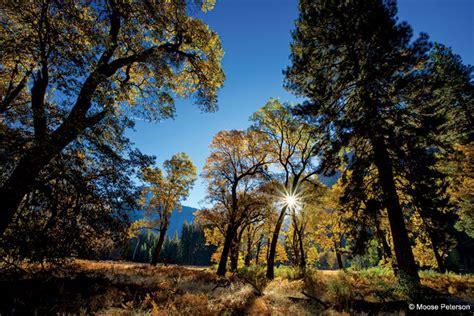 Landscape Photography Gear Nikon Into The Outdoor Photographer