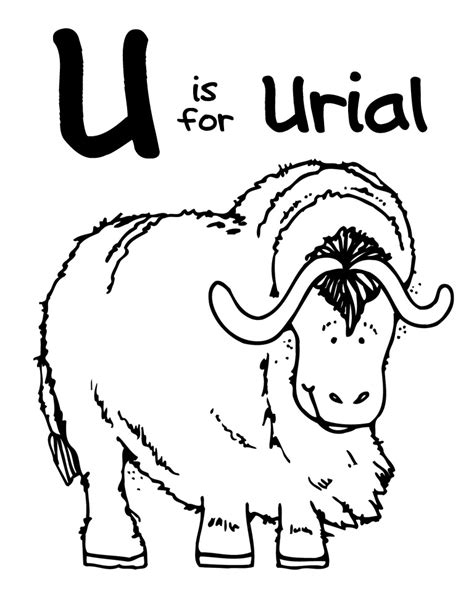 coloring pages of things that start with u animals that start with the letter u russianbridesglobal