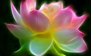 3d Lotus 3d Lotus For Android By Woodcompany Appszoom