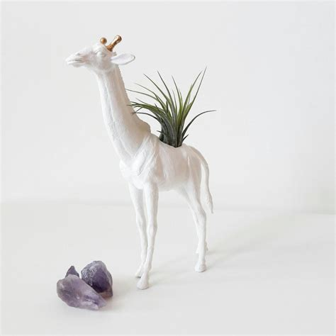animal planters animal planter indoor planter air plants by
