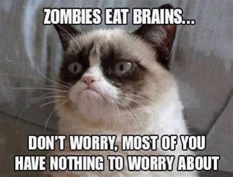 Original Grumpy Cat Meme - earn gold here images grumpy cat mean memes original