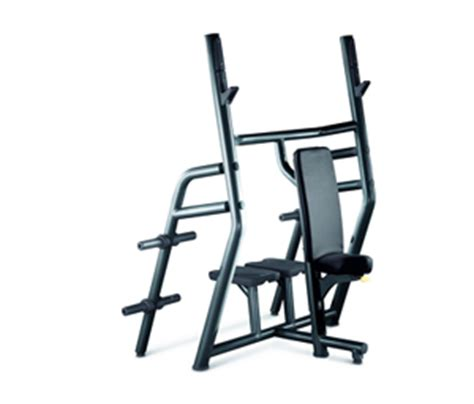 vertical bench leg raise technogym element leg raise dip купить в официальном
