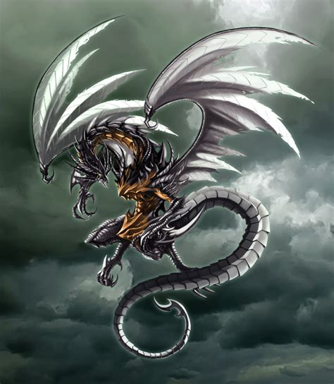 dark dragon griffins and dragons images dark dragons hd wallpaper and