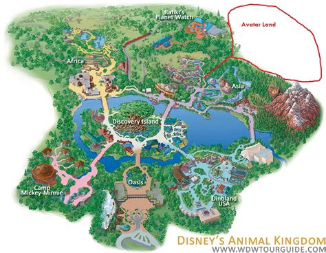 disney world sections update on avatarland walt disney world for grownups