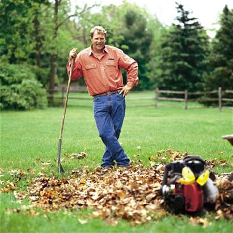 backyard cleanup fall gardening tips part 1