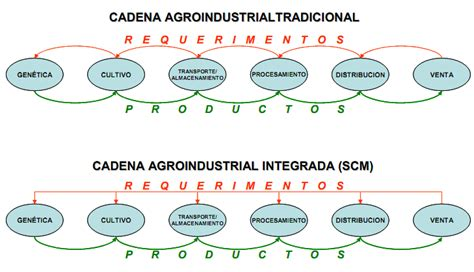 cadena de valor caracteristicas caracter 237 sticas de las cadenas agroindustriales gestiopolis
