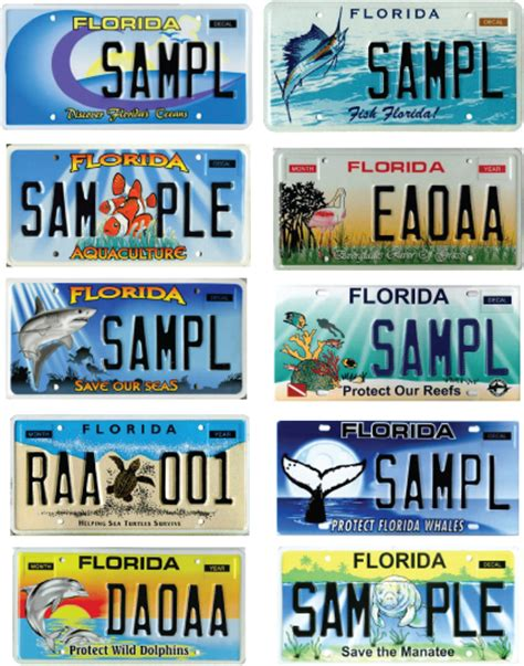 Florida Vanity Plates by Honk If You Manatees Sea Turtles Whales Three