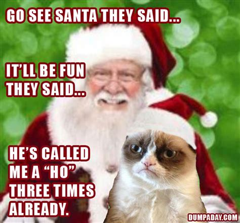 Funny Christmas Cat Memes - laugh at 17 funniest grumpy cat pictures