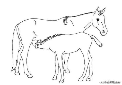 Coloring Pages Of Horses And Foals by Foal And Its Picture Coloring Pages Hellokids