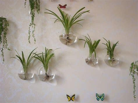 Wall Decoration 10cm X 10cm Harimau new style 3pcs set 10cm 12cm 15cm hanging wall planter