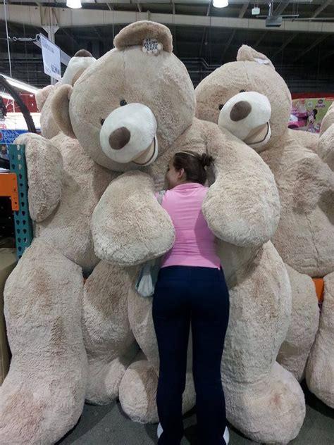 big teddy 25 best ideas about teddy on big