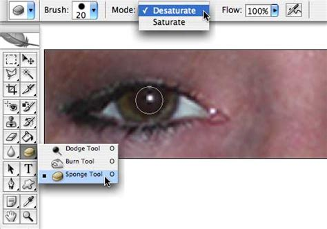 photoshop cs5 red eye tool tutorial red eye reduction with photoshop cs2 planet photoshop