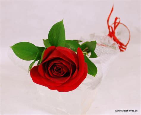 imagenes de flores individuales precios de flores por tallos sueltos tienda online de