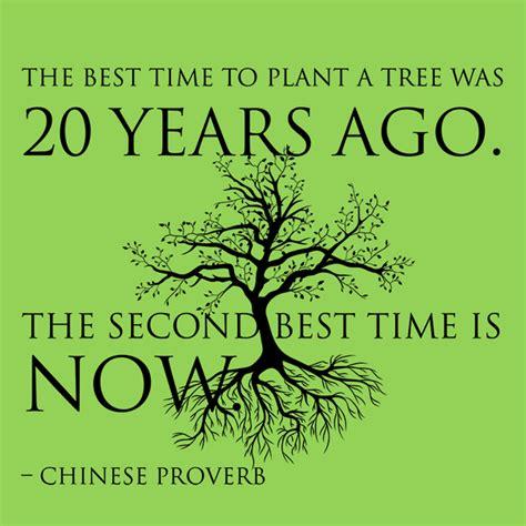 What Is The Best Length To Do A Detox by The Best Time To Plant A Tree Was 20 Years Ago The Second