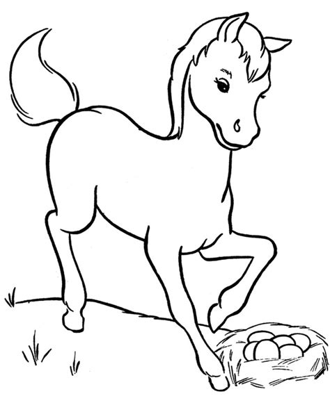 miniature horse coloring page horse template animal templates free premium