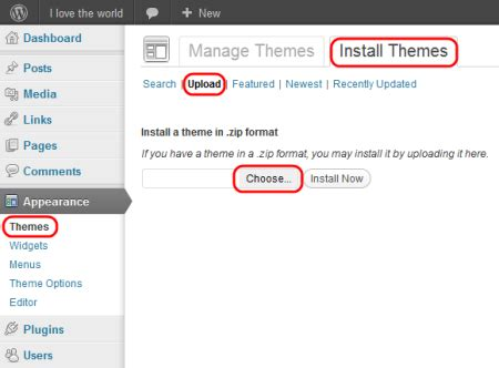 how to use wordpress themes