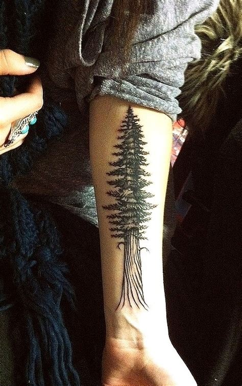 redwood tree tattoo 15 tree designs you won t miss pretty designs