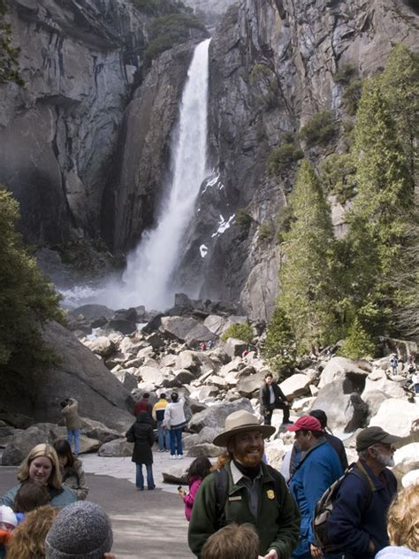 are dogs allowed in yosemite key to enjoying pet friendly yosemite national park is planning far in advance pet