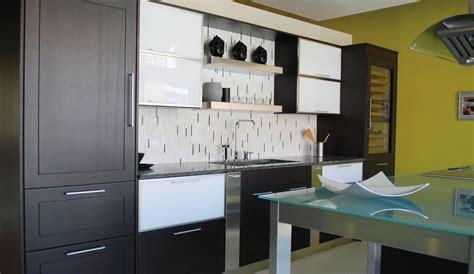100 modern kitchen cabinets chicago kitchen italian kitchen design modern kitchen