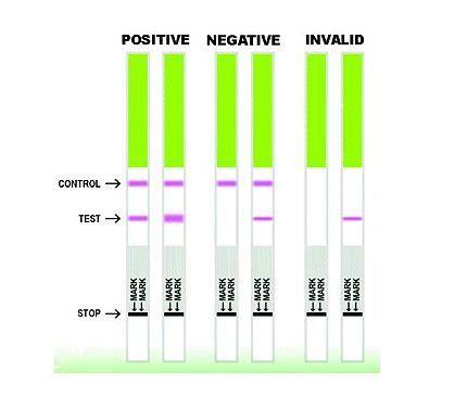 test di ovulazione tentativi mirati e fertilit 224