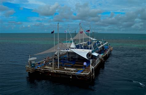 great barrier reef pontoon the hardy reef pontoon great barrier reef round the