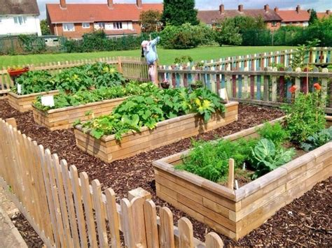 raised bed gallery woodblocx