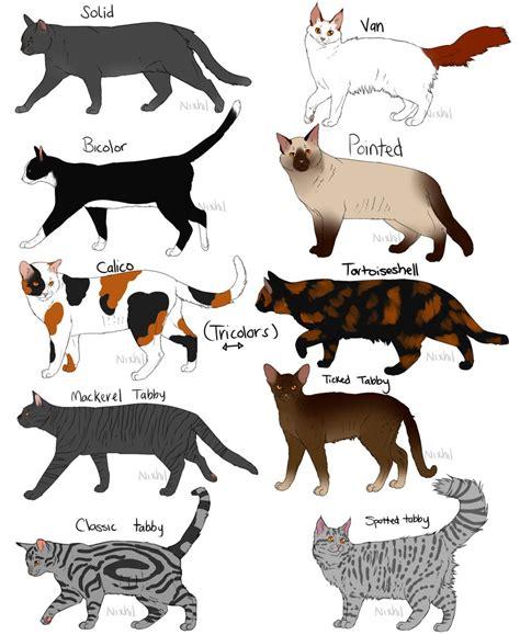 cat pattern types cat fur patterns by nixhil on deviantart