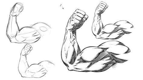 Arm Drawing