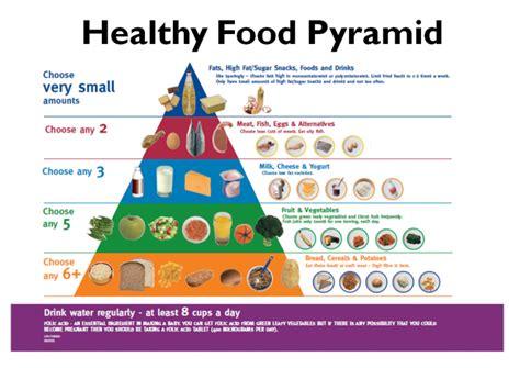 better food pyramid trending